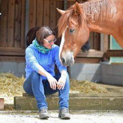 persoenlichkeitsentwicklung mit pferden_businesscoaching_einzelcoaching_heldenspruenge