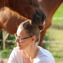 Persönlichkeitsentwicklung mit Pferden_pferdeunterstütztes coaching_heldenspruenge